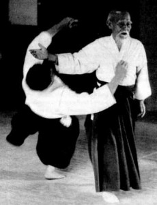 aikido-the-art-of-peace-430-d0000FD3088a652b94f05